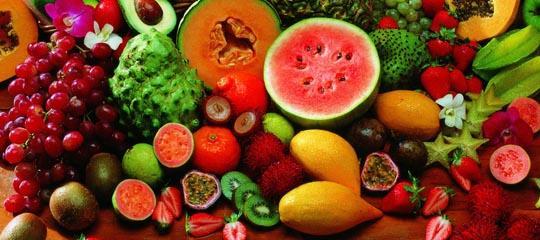 海南冬天有哪些热带水果?图片