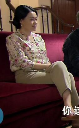 跪求乡村爱情变奏曲中杨晓燕穿的这件带花衬衫,是什么