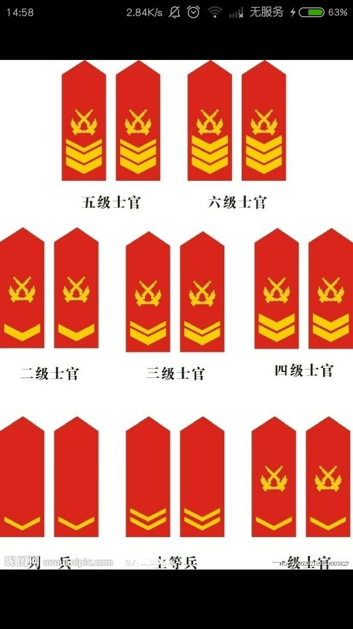 武警军人的肩章各代表什么?有图片的