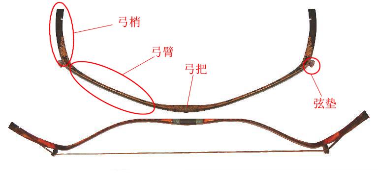 眼镜组成的主要结构图