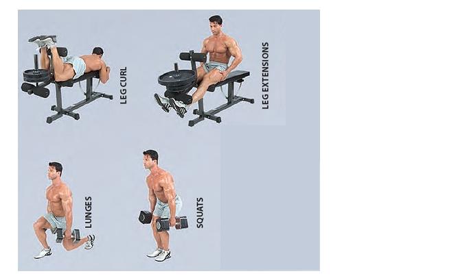 动作4,跪姿单臂哑铃臂屈伸 动作5,坐姿哑铃弯举 哑铃锻炼方法图解——