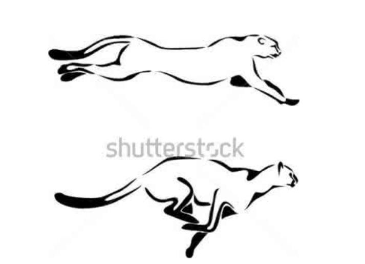 猎豹简笔画图片