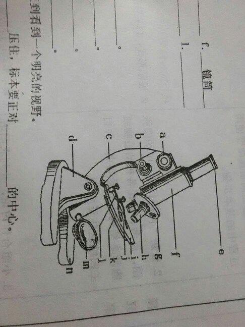 显微镜的基本构造