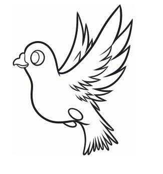 鸽子怎么画?