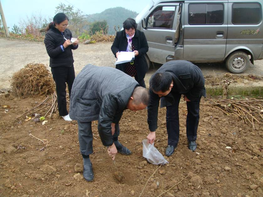 土壤采样的介绍黑坑3米6图片