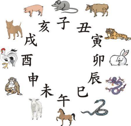 十二生肖五行性格分析的介绍图片