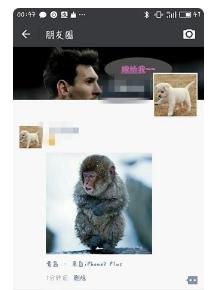 微信朋友圈怎么显示来自iphone7 plus小尾巴?图片