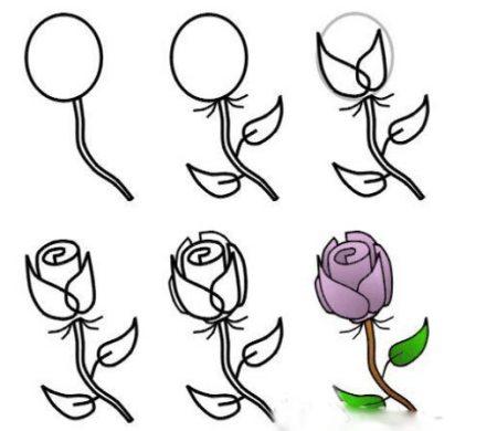 用水彩笔画玫瑰 图片