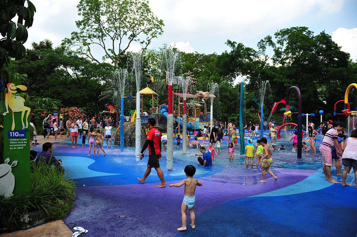 动物园儿童游乐场图片