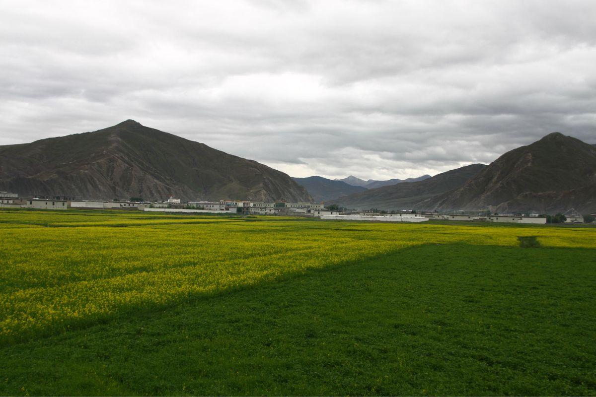 美丽的藏族村庄图片