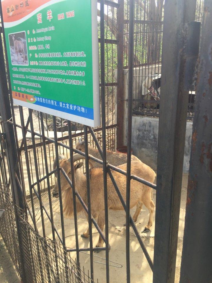 1604石家庄动物园