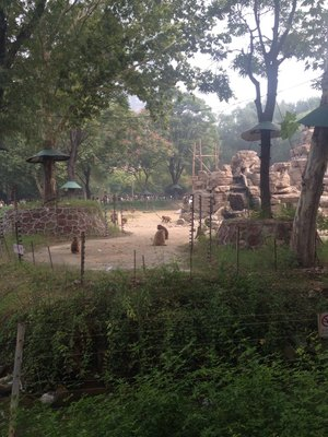 郑州市动物园游记_旅行画册旅行图片_百度旅游
