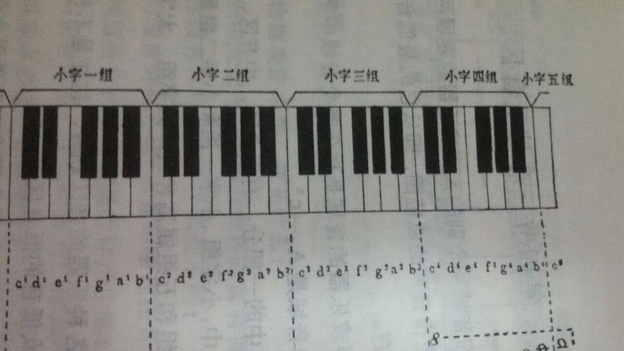 画一组钢琴键盘并在相应的位置写出音名