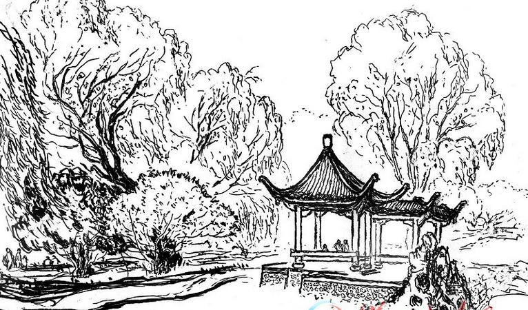 求几张简单风景树速写临摹