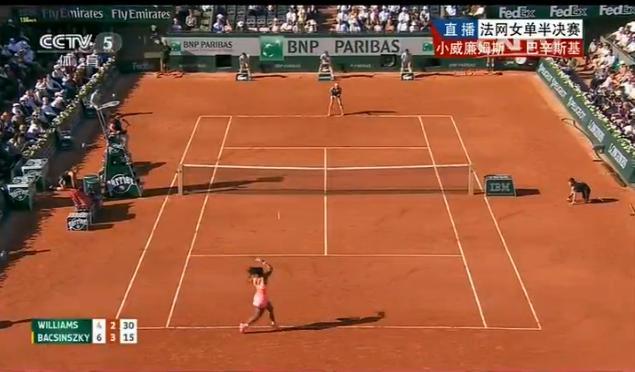 该怎样才能看网球比分直播呢?找半天没找到,急急