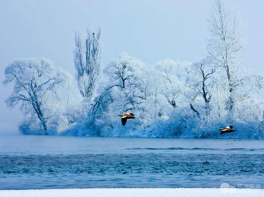 吉林国际雾凇冰雪节的第十二届吉林国际雾凇冰雪节图片