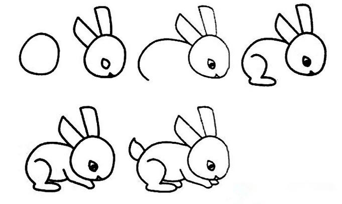 在右边画兔子的耳朵. 画兔子小巧身体的曲线,注意大腿处的转折.