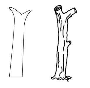 枯树筒笔画怎么画?图片