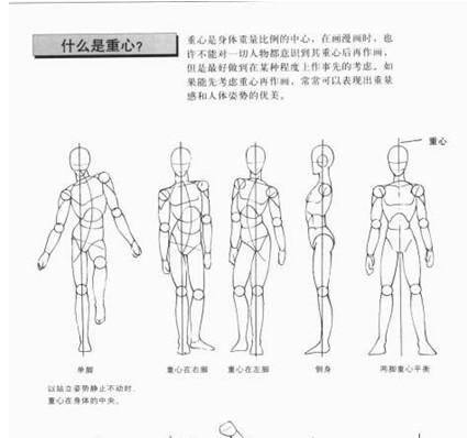 如何画动漫人物的身体