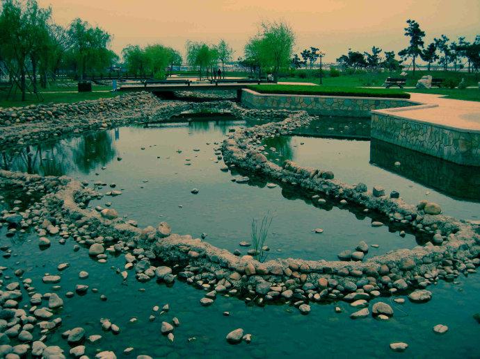 唐岛湾滨海公园,位于青岛市西海岸的黄岛区.是一个唐.