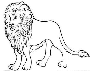 狮子简笔画怎样能又简单又好看