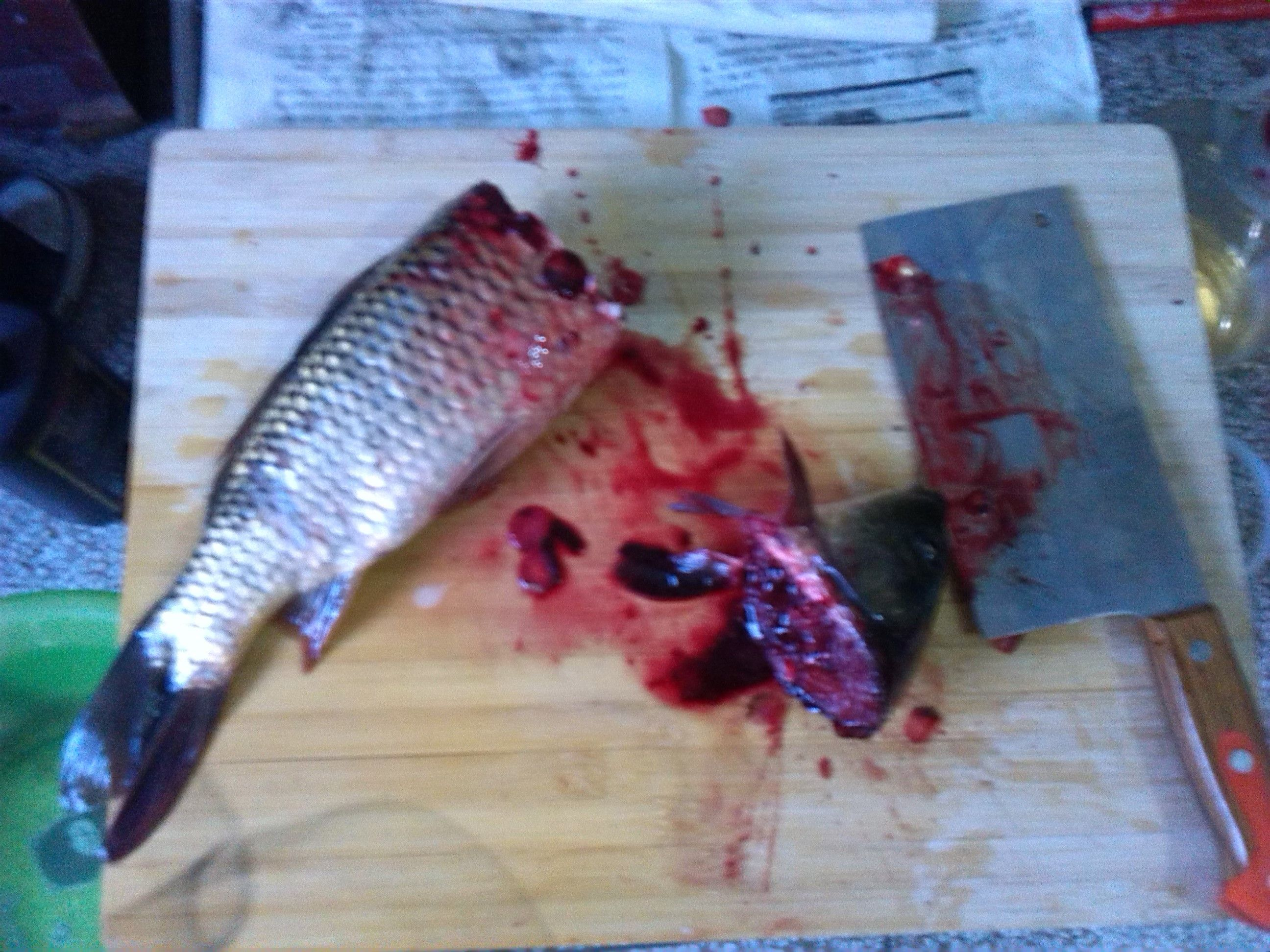 这种杀鱼方法正不正确?