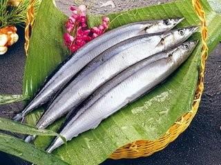 黄河刀鱼的相关诗歌