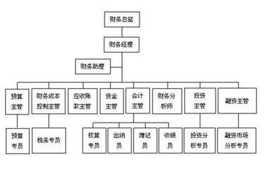 财务部组织结构图