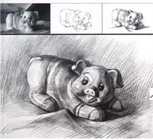 美术素描画可爱的小猪