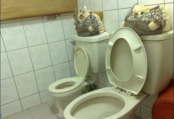 一个卫生间的下水道可以安装几个坐便器图片