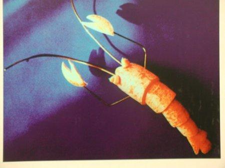 萝卜手工可以制作哪些动物