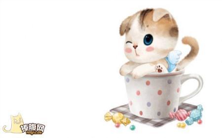 求茶杯猫动漫图,就像这些图片