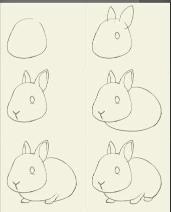 猴子怎么画?兔子怎么画?