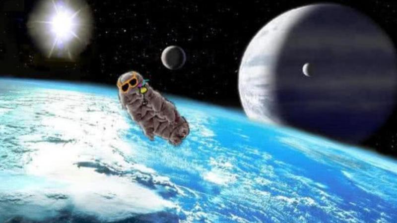 """遇水复活的""""地球最强""""动物能在月球繁殖进化吗?"""