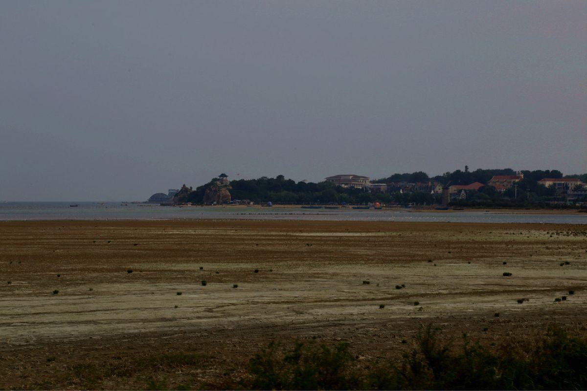 北戴河海边湿地及鸽子窝公园风光图片