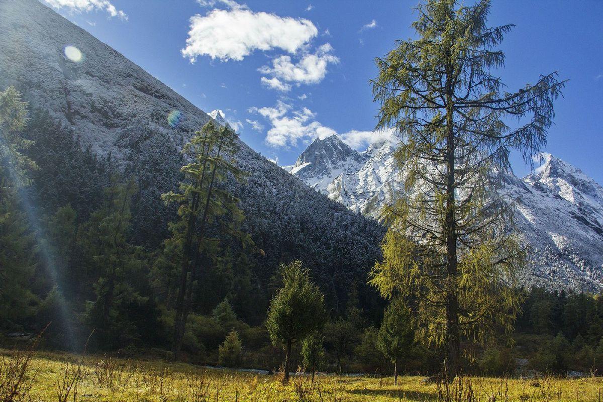 蓝天白云,雪山森林.图片