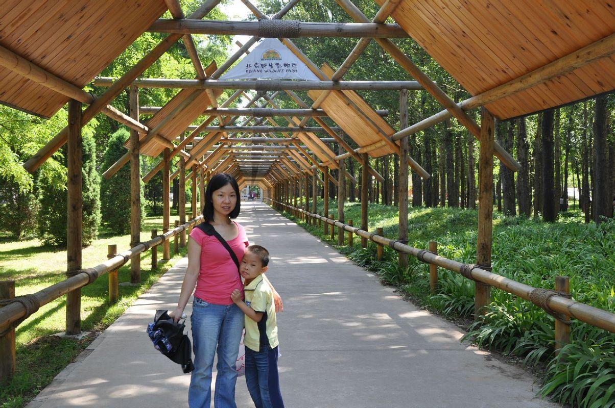 北京大兴野生动物园_旅行画册旅行图片_百度旅游