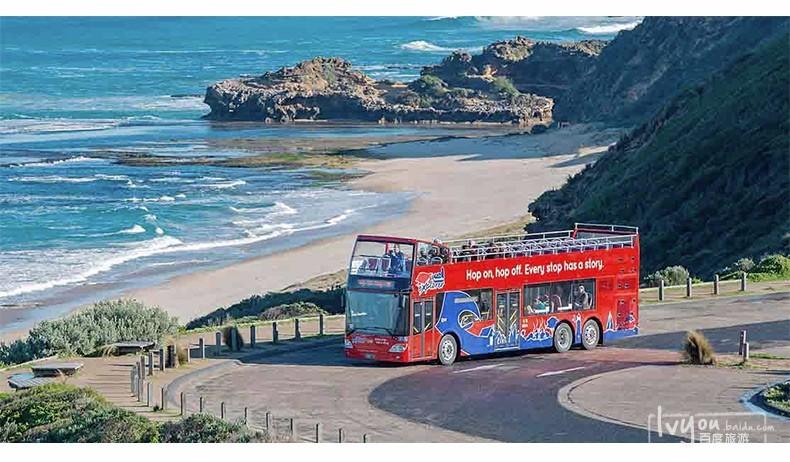 巴士包括红色线路和蓝色线路,红色线路sydney tour包括环形码头,悉尼