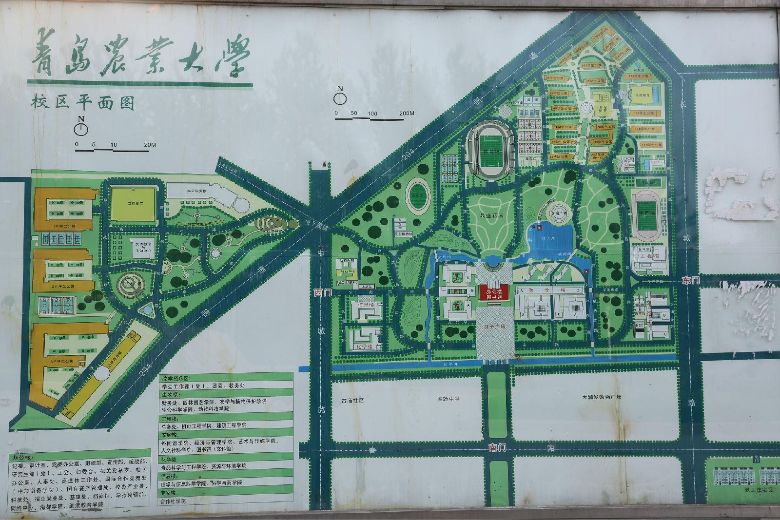 青岛5区平面图