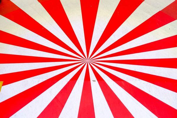 香港的旗帜图片大全