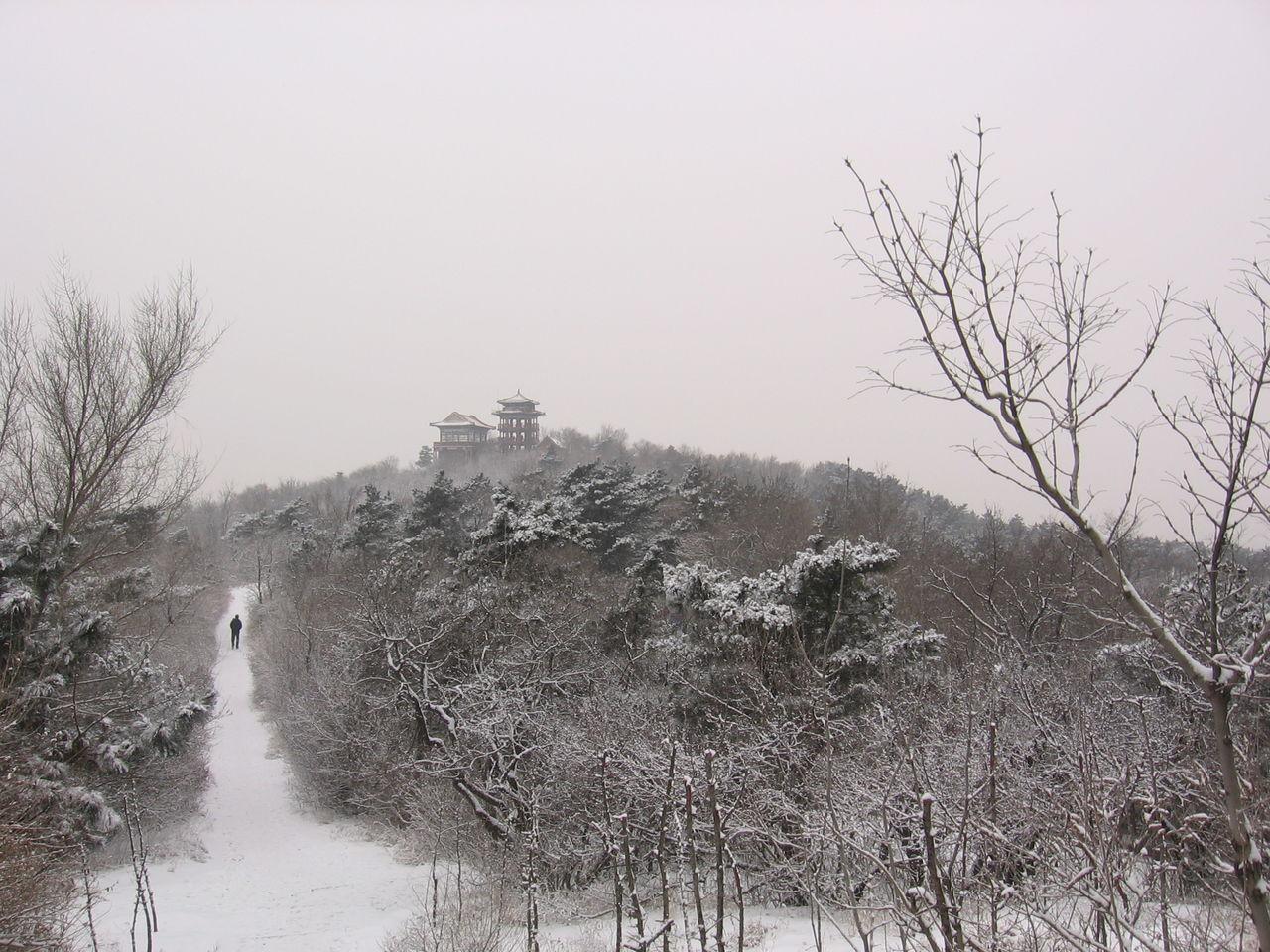 八景龙首山的铁岭诗小学生图片的六抄报一手图片