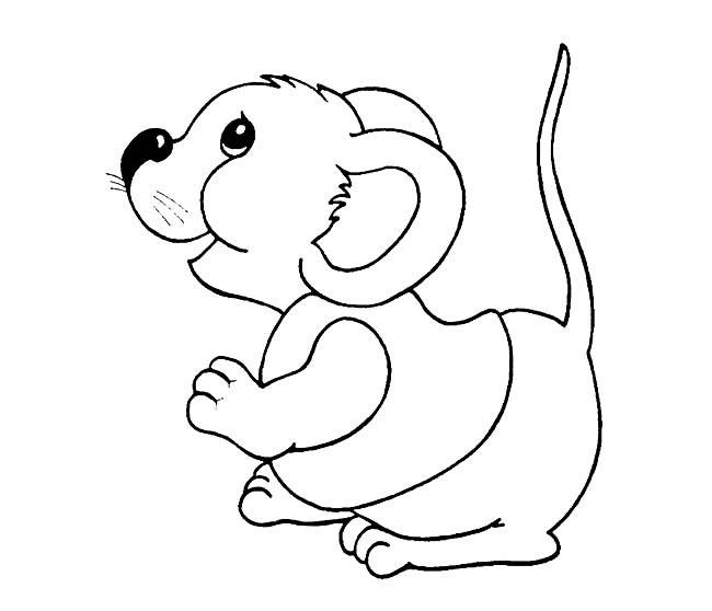 可爱花栗鼠怎么简笔画