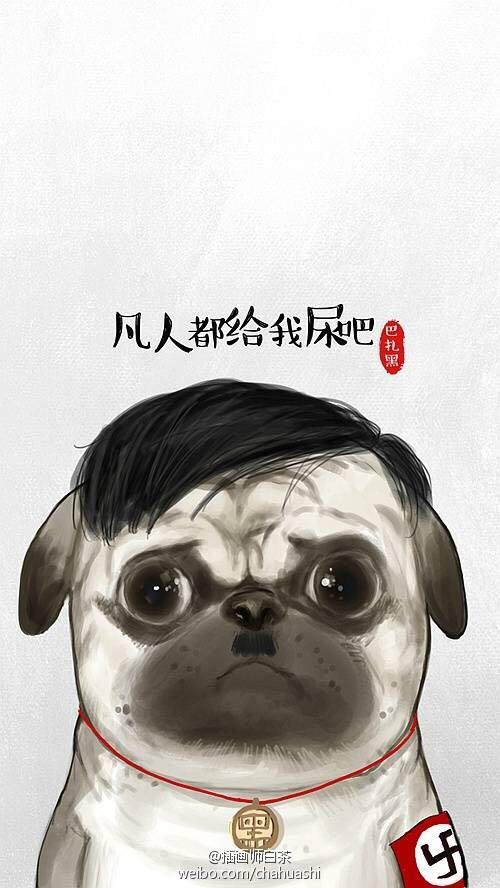 插画师白茶画的巴扎黑的狗是什么狗图片