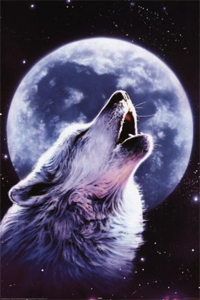 狼国成人色_求下图的原图,关于狼和月的,狼啸月