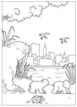 熊手绘简图