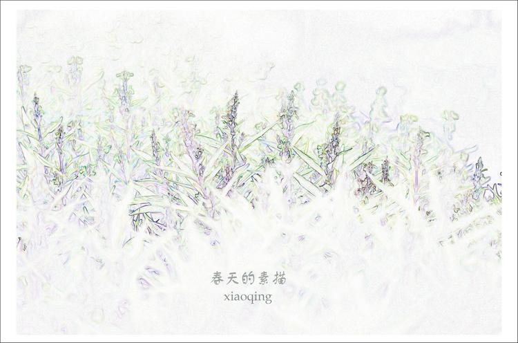 以春天为主题的画 素描