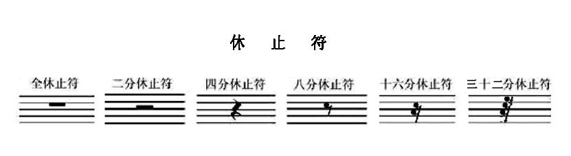 正确标记出五线谱中音符的组成部分