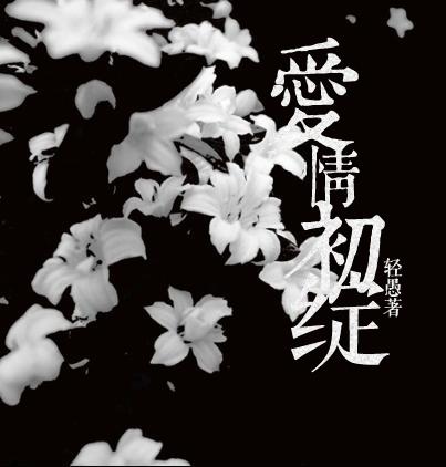 小说封面图片