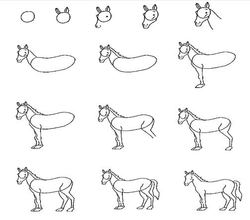 小学生怎样画马图片
