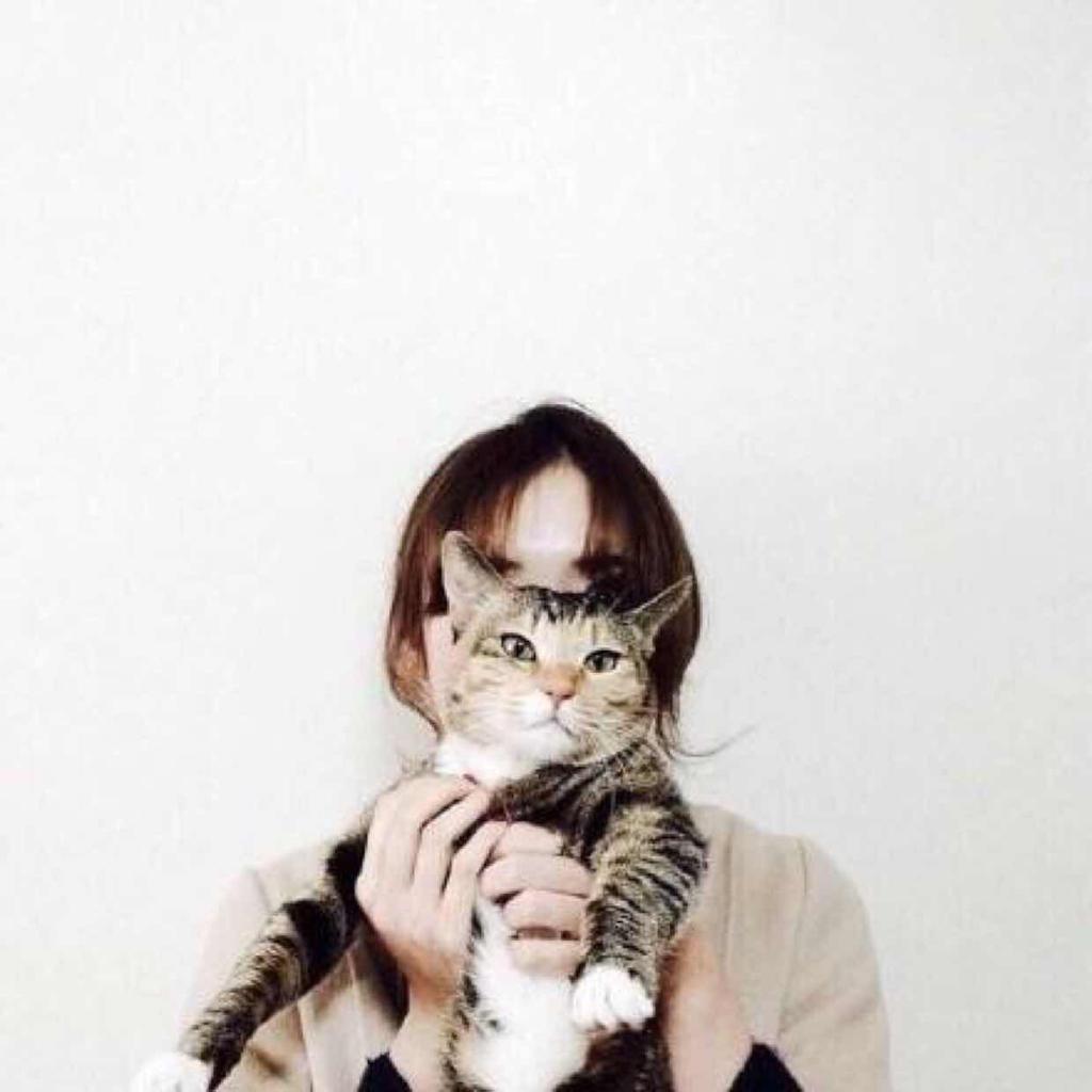 呆萌女生头像抱猫_求下面这张女生抱猫图片的情侣头像.